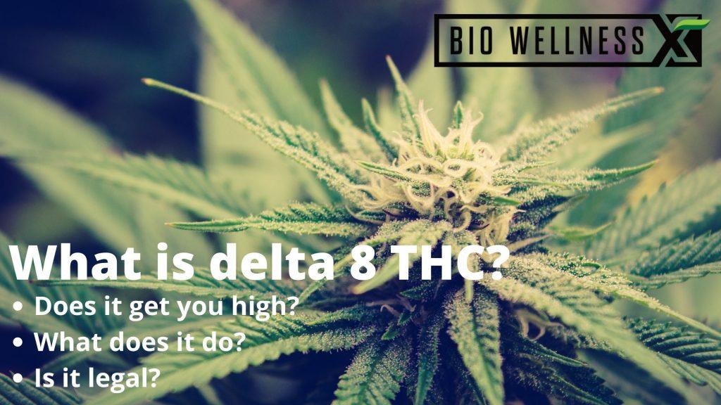 What is delta 8 THC - biowellnessx